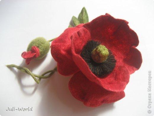 Мак, анимон, роза, яблоневый цвет. фото 4