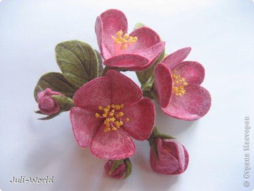 Мак, анимон, роза, яблоневый цвет. фото 11