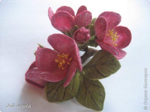 Мак, анимон, роза, яблоневый цвет. фото 10