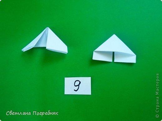 Двойной модуль! фото 12