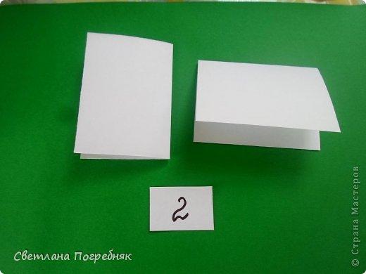 Двойной модуль! фото 5