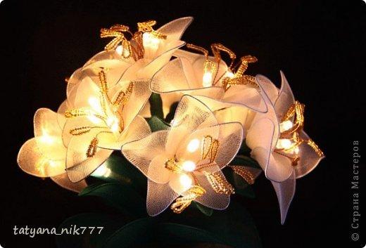Цветы светильники из капрона. фото 4