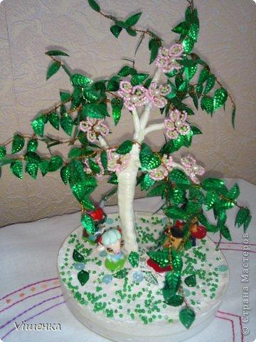 1 деревце фото 6