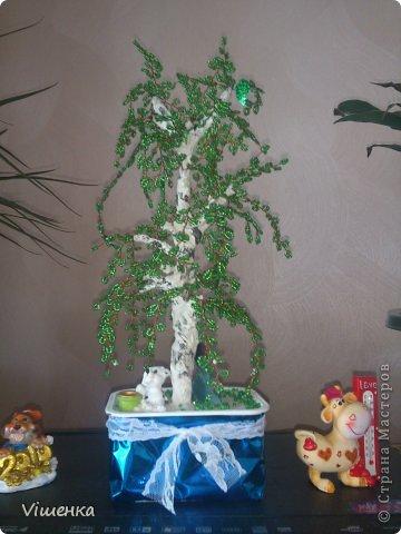 1 деревце фото 7