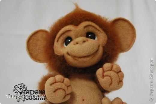 Слышен гомон спозаранок: Стая диких обезьянок Веселится и шалит, Среди веток пальм парит. Тут простор для шалунишек: Пусть на ветках нету шишек, Но бананы всегда есть, Связок их не перечесть. И летят от них кожурки, Перепачканы все шкурки, И хохочут и кричат, Дразнятся и верещат. Но не только лишь бананы- Занимают их лианы, Что везде: и там, и тут, Оплетая всё, растут. Как на них не прокатиться, Стоит только ухватиться Ловкой лапкою одной... Джунгли- дом для них родной! (О. Фомина) Высота: 19 см Материалы: шерсть, пластика, проволока, лак, пастельные карандаши. фото 2