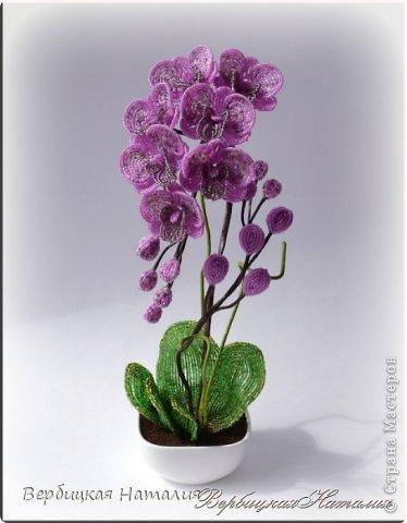 Орхидеи из бисера Бисер