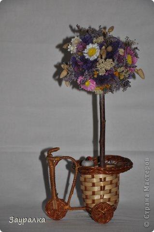 Подарок садоводу фото 2