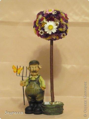 Подарок садоводу фото 1