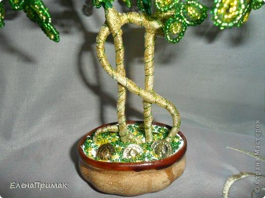 Давно хотела попробовать сделать деревья из бисера. В создании этого дерева очень помог МК замечательной мастерицы mari-m26 (https://stranamasterov.ru/node/276301?c=favorite). Спасибо за подробный МК. фото 3