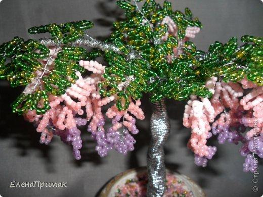 Давно хотела попробовать сделать деревья из бисера. В создании этого дерева очень помог МК замечательной мастерицы mari-m26 (https://stranamasterov.ru/node/276301?c=favorite). Спасибо за подробный МК. фото 8