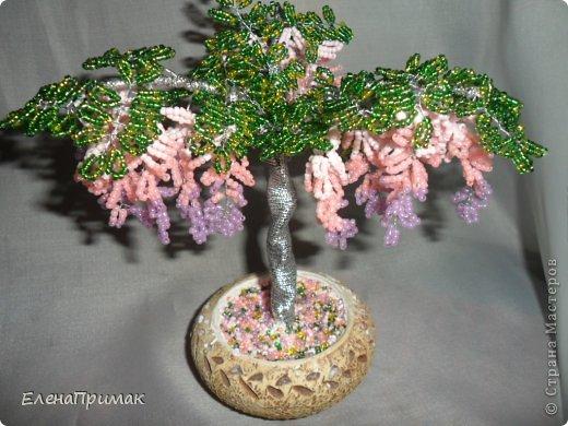 Давно хотела попробовать сделать деревья из бисера. В создании этого дерева очень помог МК замечательной мастерицы mari-m26 (https://stranamasterov.ru/node/276301?c=favorite). Спасибо за подробный МК. фото 6