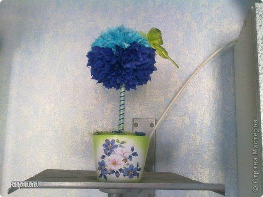 Деревце на синею кухню. фото 2