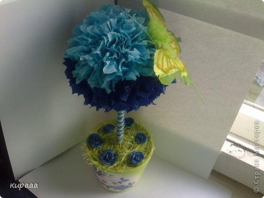 Деревце на синею кухню. фото 3