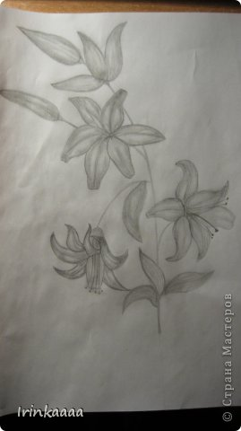 Рисунки))) фото 3