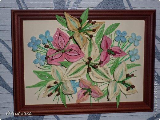 Цветы фото 6