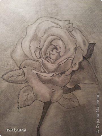 Рисунки))) фото 6