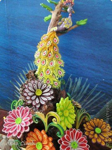 Птичка на дереве фото 2