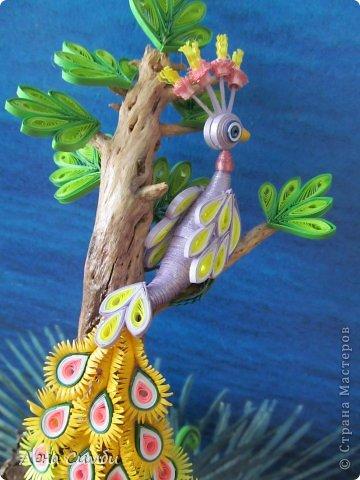 Птичка на дереве фото 4
