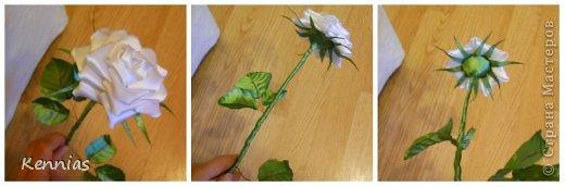 Здравствуйте!)В инете не нашла нормальный МК розы на стебле, поэтому решила сделать сама)Может в своей работе я пошла по сложному пути (если кто-то знает как легче сделать, поделитесь), но все-же))Прошу любить и жаловать!) фото 27