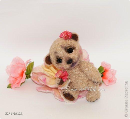 Мишка Дашенька фото 3