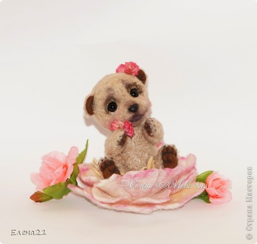 Мишка Дашенька фото 5