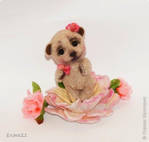Мишка Дашенька фото 7