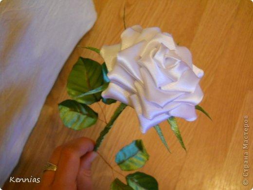 Здравствуйте!)В инете не нашла нормальный МК розы на стебле, поэтому решила сделать сама)Может в своей работе я пошла по сложному пути (если кто-то знает как легче сделать, поделитесь), но все-же))Прошу любить и жаловать!) фото 1