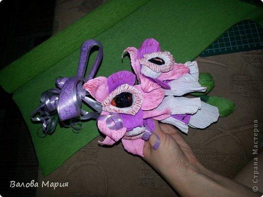 Сладкая орхидея фото 2