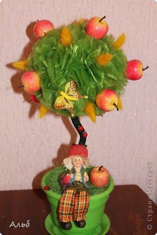 Райские яблочки. фото 1