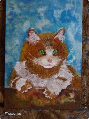 Вот родился такой рыжий котяра... фото 1