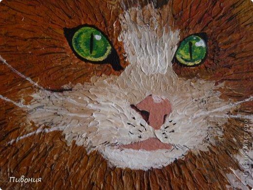 Вот родился такой рыжий котяра... фото 3