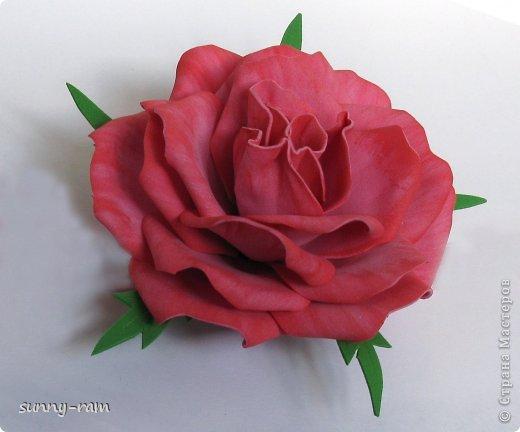 Роза из фоамирана, покрашена акриловыми красками фото 1