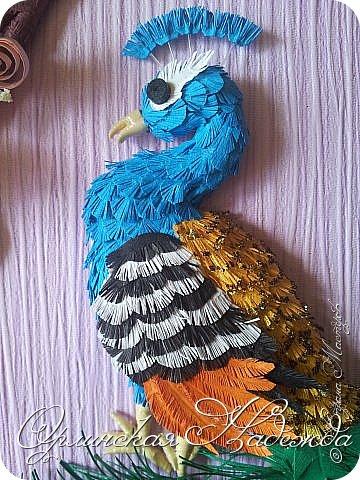 Ещё павлин. Цветы сакуры отсюда: http://pinterest.com/pin/125819383311829955/  Павлин поближе. фото 4