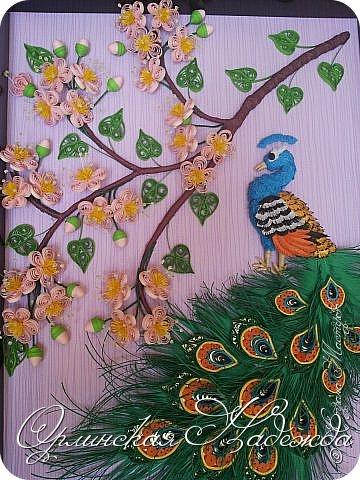 Ещё павлин. Цветы сакуры отсюда: http://pinterest.com/pin/125819383311829955/  Павлин поближе. фото 7
