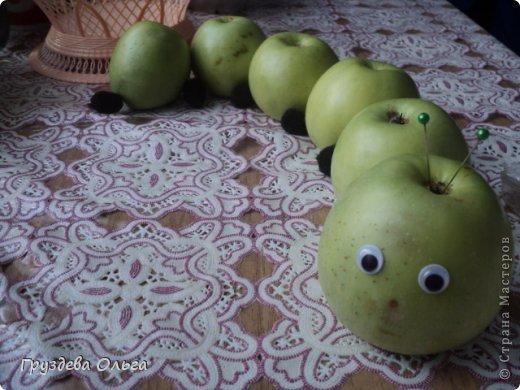 Здравствуйте! Сегодня я Вам покажу фотки из моего альбома '' Мордашки '' .  фото 23