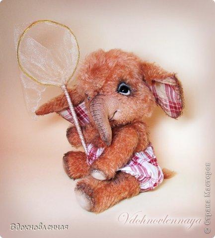 Маленький слоненок, как все детки, очень любит бегать по летней лужайке, ловить красивых бабочек, рассматривать их и конечно же отпускает фото 6