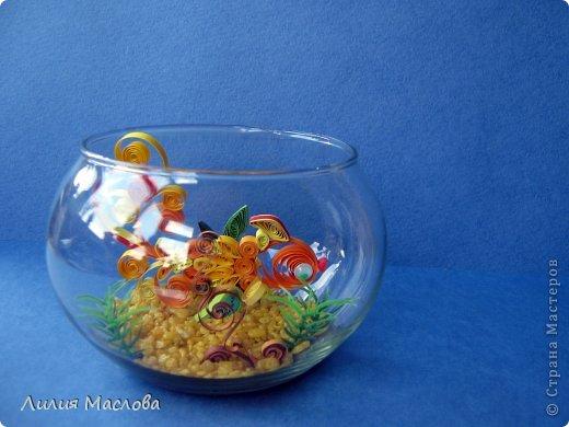 И эта рыбка уплыла в подарок....:) фото 1