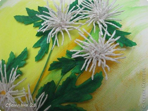 Всем привет!!!!!! У меня расцвели хризантемы.  фото 3
