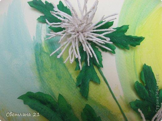 Всем привет!!!!!! У меня расцвели хризантемы.  фото 4