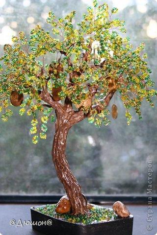 Добрый день!  Денежное деревце сплелось по мотивам..... см. выше автора skarabeya https://stranamasterov.ru/node/555693?t=2061. Очень мне нравятся ее работы. Выглянуло солнышко и я решила еще раз сфоткать деревце со слоником.... фото 4