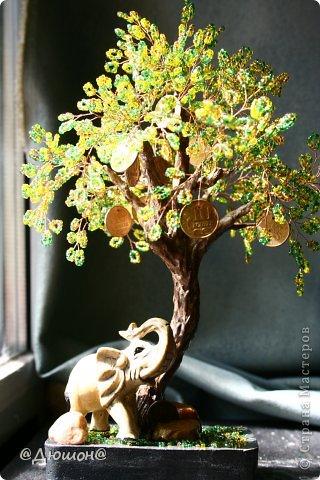 Добрый день!  Денежное деревце сплелось по мотивам..... см. выше автора skarabeya https://stranamasterov.ru/node/555693?t=2061. Очень мне нравятся ее работы. Выглянуло солнышко и я решила еще раз сфоткать деревце со слоником.... фото 1