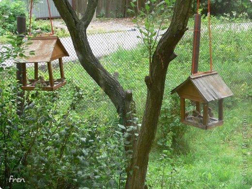 Добрый день дорогие мастера и мастерицы! Хочу рассказать маленькую историю, которая произошла со мной в июне. Я очень люблю проводить лето на даче, сажаю цветы, ухаживаю за садом. Покормиться в сад прилетает много птиц: воробьи, синицы, чижи, дубоносы, скворцы и дрозды. Каждое утро насыпаю им в кормушки угощения. И в одно такое утро я обнаружила на земле в траве около дома маленького птенчика-воробушка. Был сильный ветер и его видимо сдуло вместе с гнездом из под крыши дома. Сначала посадила его на ветку и решила дождаться родителей, но в течение часа никто не прилетел. Вот и взяла его себе на воспитание. :) Принесла домой и устроила гнездо в коробке. фото 14