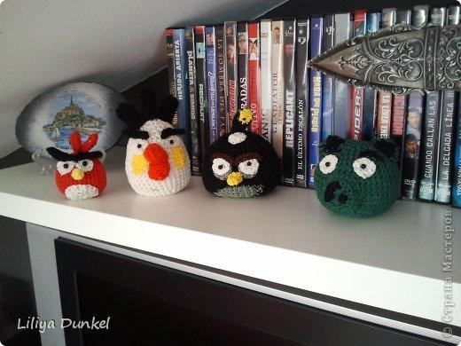 angry birds i svinushka фото 1