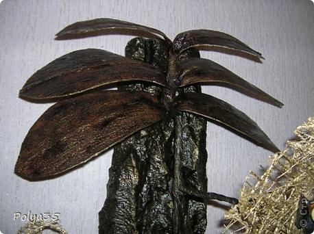 Доброго времени суток! Сделала вот такую ветку орхидеи. МК цветов здесь https://stranamasterov.ru/node/529254. Стебель - проволока обмотанная салфетками. Листья - фактурные обои, крашенные кофе растворимый +ПВА. Кора настоящая, сверху салфетки на ПВА (укрепила). Размер коры 72 см.  фото 3