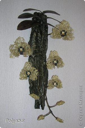 Доброго времени суток! Сделала вот такую ветку орхидеи. МК цветов здесь https://stranamasterov.ru/node/529254. Стебель - проволока обмотанная салфетками. Листья - фактурные обои, крашенные кофе растворимый +ПВА. Кора настоящая, сверху салфетки на ПВА (укрепила). Размер коры 72 см.  фото 1