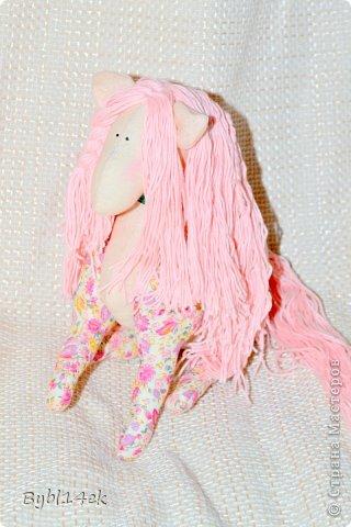 Добрый день , сегодня 02 июля 2013 года родилась у меня лошадка по имени Барби , размером 20 х 24 см. Спаибо что зашли ко мне в гости , у увидев  такую прелесть на просторах интернета захотелось сделать такую красавицу.   фото 1