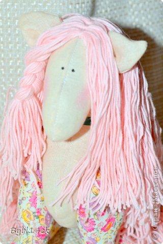 Добрый день , сегодня 02 июля 2013 года родилась у меня лошадка по имени Барби , размером 20 х 24 см. Спаибо что зашли ко мне в гости , у увидев  такую прелесть на просторах интернета захотелось сделать такую красавицу.   фото 2