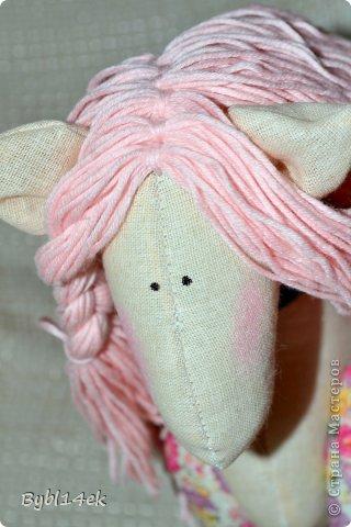 Добрый день , сегодня 02 июля 2013 года родилась у меня лошадка по имени Барби , размером 20 х 24 см. Спаибо что зашли ко мне в гости , у увидев  такую прелесть на просторах интернета захотелось сделать такую красавицу.   фото 8