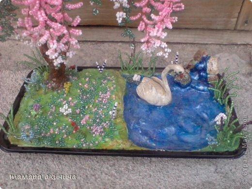 моя глициния и лебедь с маленьким водопадом. это общий вид. фото 2