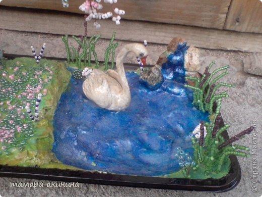 моя глициния и лебедь с маленьким водопадом. это общий вид. фото 3